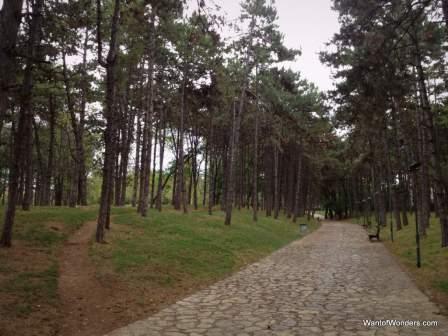City Park in Pristina